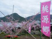 2010_04100064.JPG