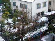 2011_02150008.JPG